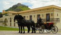 Hotel Kapitany in Sumeg offers horse cart services